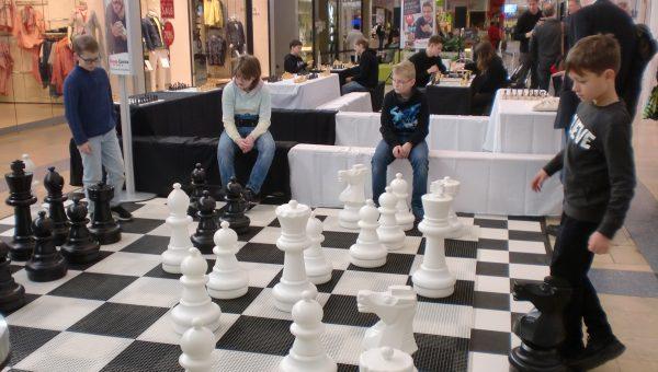 AG Schach